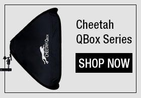 CheetahStand Automatic Lightstand