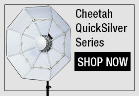 Cheetah Quicksilver