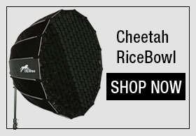 Cheetah RiceBowl Light Modifier/Softbox