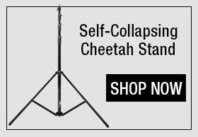 CheetahStand Automatic Lightstand